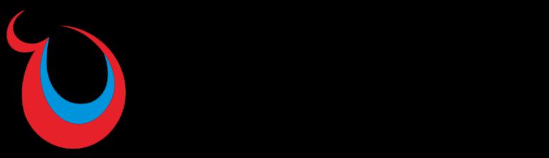 Logo_AIN